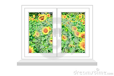Closed window with a kind on the field of sunflowers