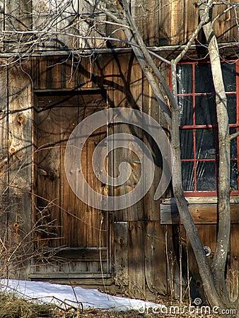 Closed wooden door in old building