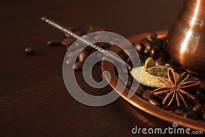 Closeup av kardemummafröskidor, anis och farin i en tesked