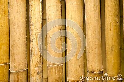 Closeup bamboo fence texture.