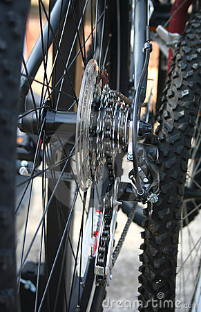 Closeup of Bike Gears
