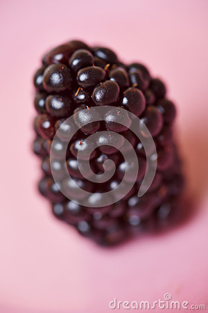 Closeup of a blackberry