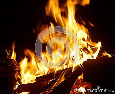 Closeup of burning fire