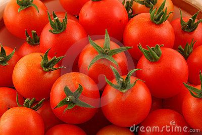 Closeup of Cherry Tomatoes with Green Stems