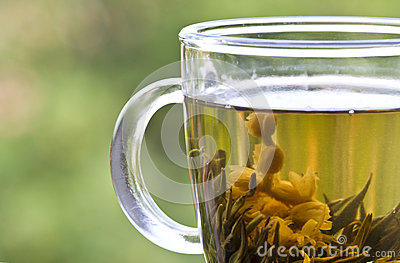 Closeup with cup of green tea
