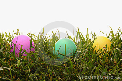 Closeup Easter Dyed Eggs in Grass