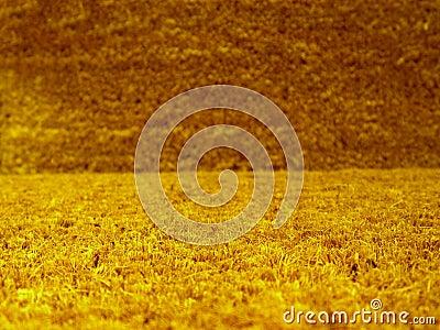 Closeup of grass rug