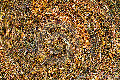 Closeup of the hay bale