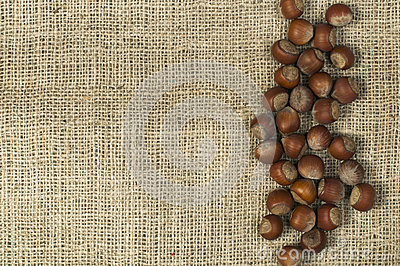 Closeup hazelnuts on burlap