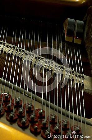 Closeup Inside A Piano