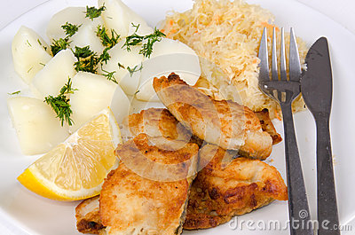 Closeup for lunch set with cod fish