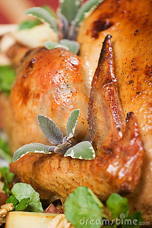 Free Closeup Of Christmas Turkey Royalty Free Stock Images - 1549079