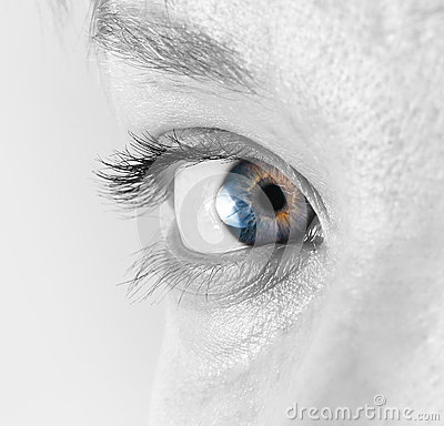 Free Closeup Of The Female Eye Royalty Free Stock Image - 69212116