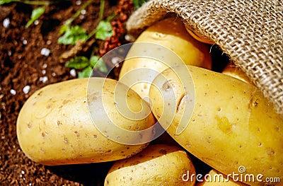 Closeup Photo Of Potatoes Free Public Domain Cc0 Image