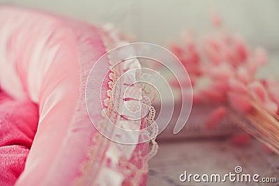 Closeup pink pet mattress in the room