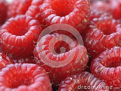Closeup of raspberries