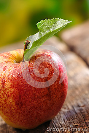 Closeup of red apple with single leaf