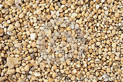 Closeup of sea sand
