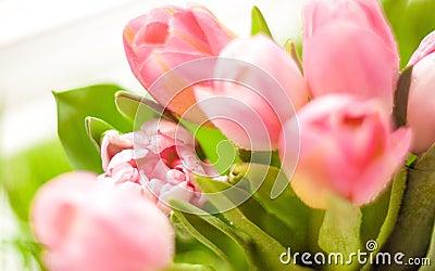 Closeup shot of bunch of pink tulips