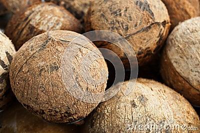 Closeup of stack coconut