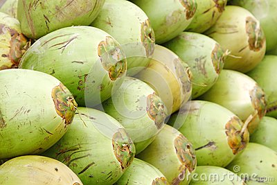 Closeup of the stacked green coconuts