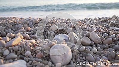 Closeup of a stony beach at evening. Sea shore at sunset. Ocean waves in sun light sunrise. Pebbles coastline 4k. Close up of a stony beach at evening. Sea shore stock video footage