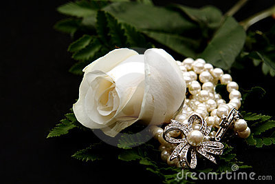 Closeup of a White Rose with Pearls