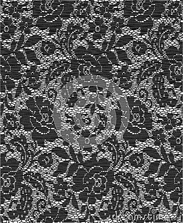 Cloth Lace