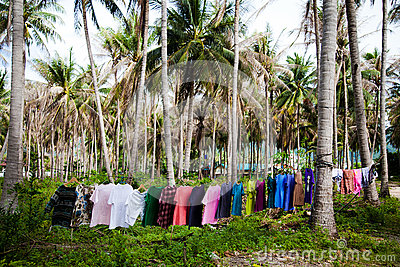 Clothes in the jungle