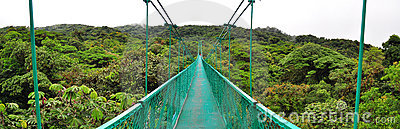 Cloud Forest hanging bridge, Costa Rica