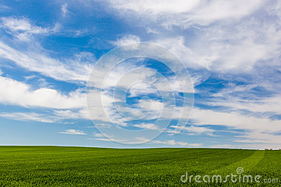 Cloud formations over a green field