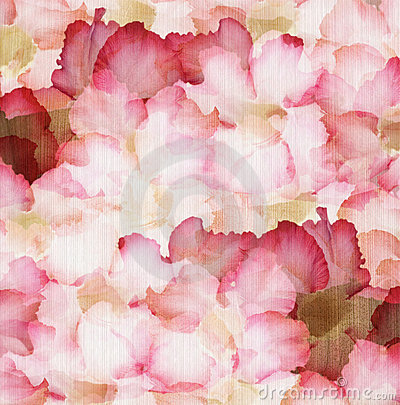 Cloud Pink and Red Desert Rose Petals