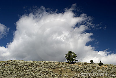 Clouds rise over the fields of Montana