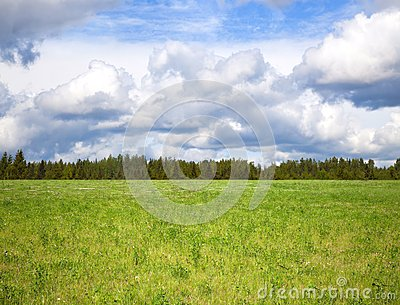 Cloudy sky over bright green meadow