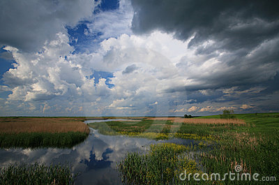 Cloudy sky over marshes