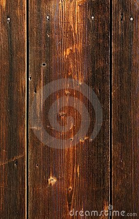 Clout nail in plank