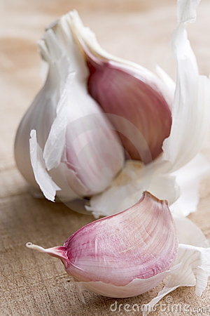 Clove And Bulb Of Garlic