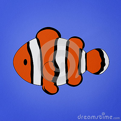 Clownfish, Amphiprion