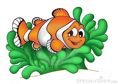 clownfish in anemone 3 royalty free stock photography Clown Fish Line Drawing Cartoon Clown Fish