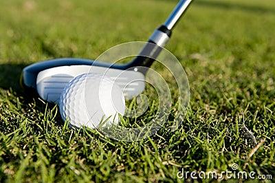 Clube e esfera de golfe no fairway