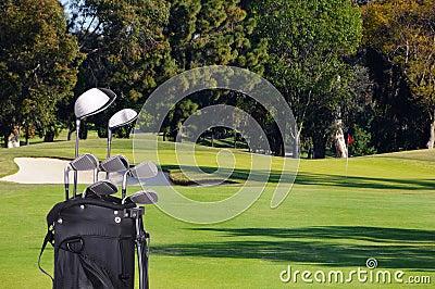 Clubs de golf en bolso en espacio abierto