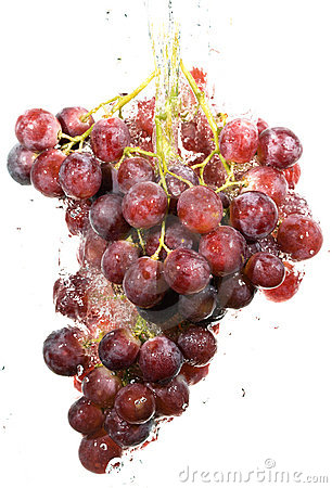 Cluster of grapes in water drops