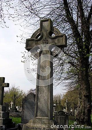 Cmentarz 35