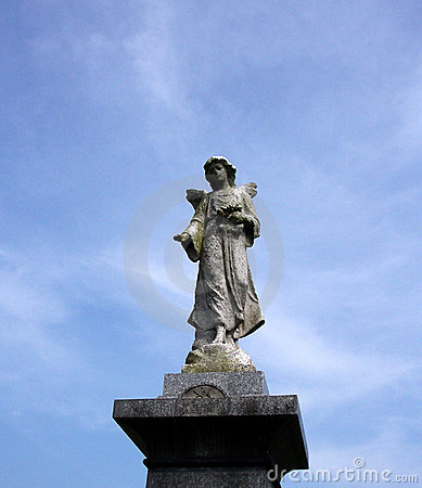 Cmentarz 43