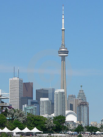 Free CN Tower And Buildings Stock Photography - 334782
