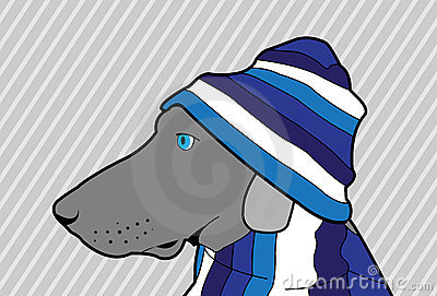 Cão azul