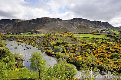 Co kerry landscape royalty free stock photo image 9203415 for Garden design kerry