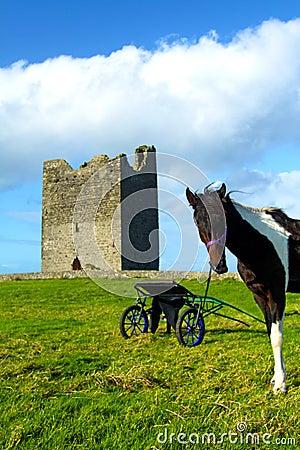 Co. Sligo Ierland van het Kasteel van Easky