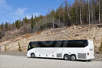 Coach in Denali National Park