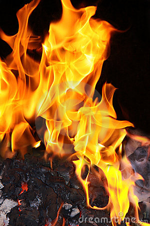 Free Coal Fire Flames Stock Photography - 11840302